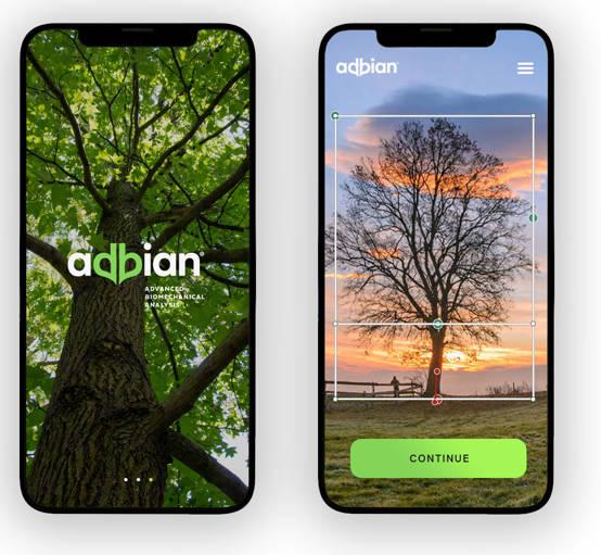 Nový software vytváří 3D model stromů, umožní lepší plánování developerských projektů