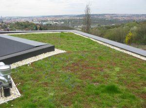 Moderní vegetační střechy vracejí přírodu do městského prostoru