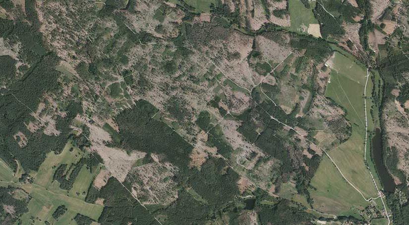 V jižních Čechách se za pět let vykácelo přes 22 tisíc hektarů lesa. Land use umí ukázat i mizející sady či novou zástavbu
