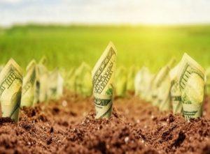 Ceny zemědělské půdy rostou. Podle čeho vybírat pozemek jako investici?